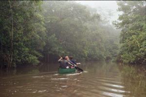 Paddeln auf dem Cuyabeno-Fluss