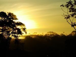 Manatee Amazon Explorer - Sonnenuntergang