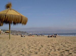 Am Strand in Vina del Mar