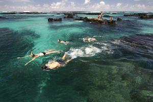 Schnorcheln auf Galapagos