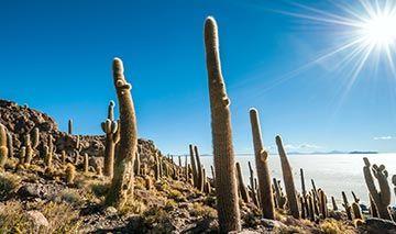 Reisen nach Bolivien 2