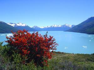 Der Lago Argentino bei El Calafate