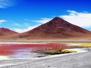 Die rote Lagune in Bolivien
