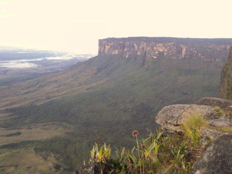 Der Tafelberg Monte Roraima