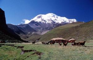 Estella del Chimborazo