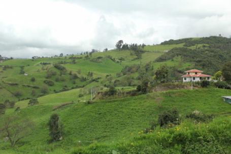 Grüne Landschaft in Ecuador