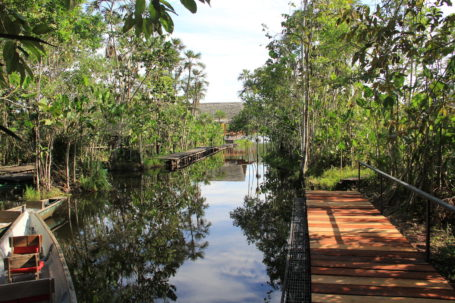 Steg der Sacha Lodge