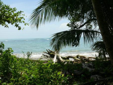 Die Karibikküste von Costa Rica