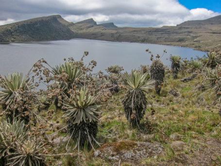 Lagune im Nationalpark Sumapaz