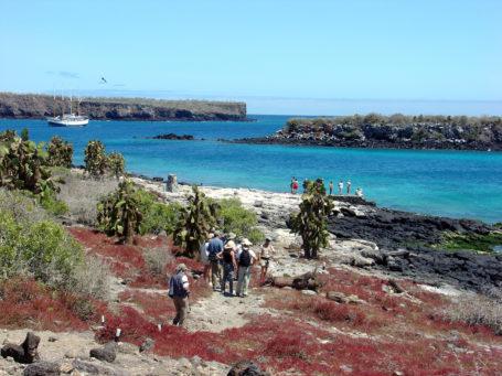 Plazas Galapagos