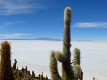 Der Salzsee Salar de Uyuni