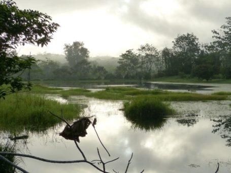 Boca Tapada in Costa Rica