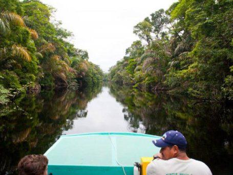 Bootsfahrt durch die Tortuguero-Kanäle