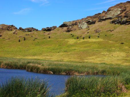 Nationalpark Rapa Nui - sehr grün und nur wenige Bäume