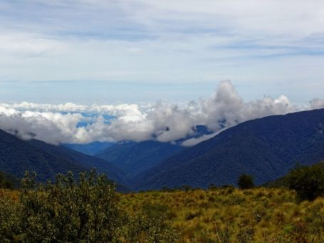 Panorama vom Bergnebelwald in Peru