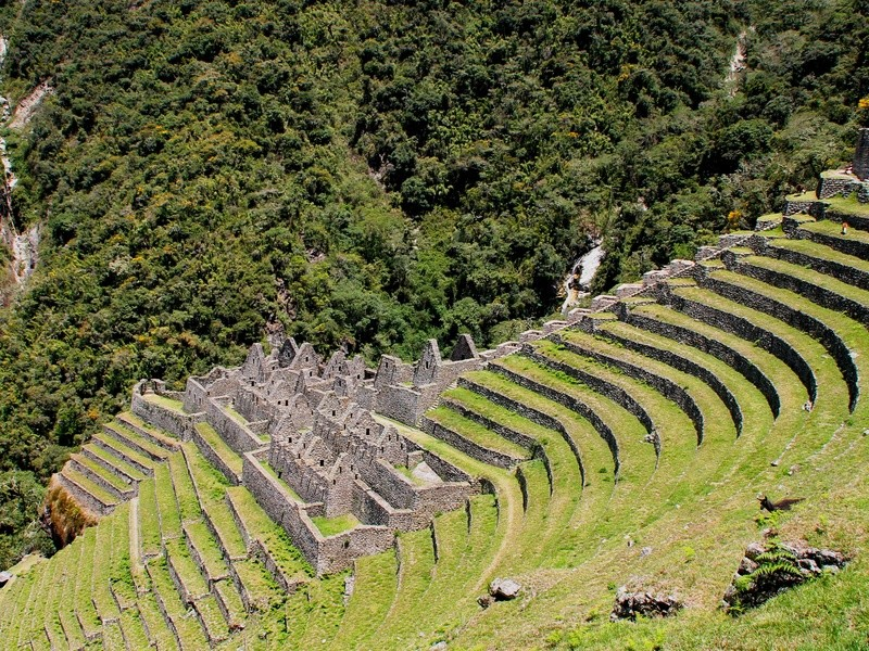 Inka-Ruinen Wiñayhuayna